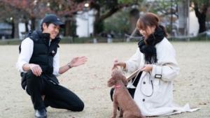 東京DOGS_いぬのまどぐち